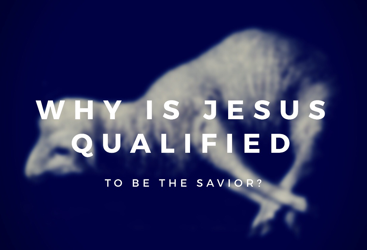 Why is Jesus Qualified to be the Savior?
