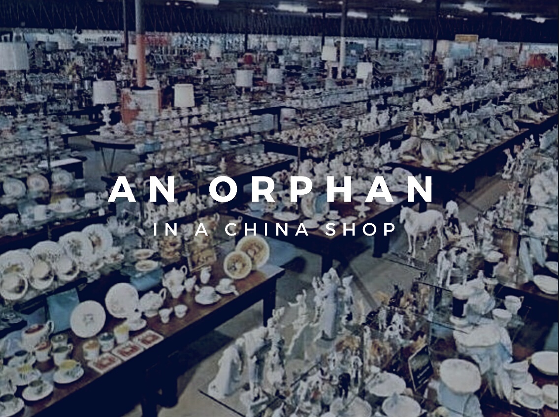 An Orphan in a China Shop