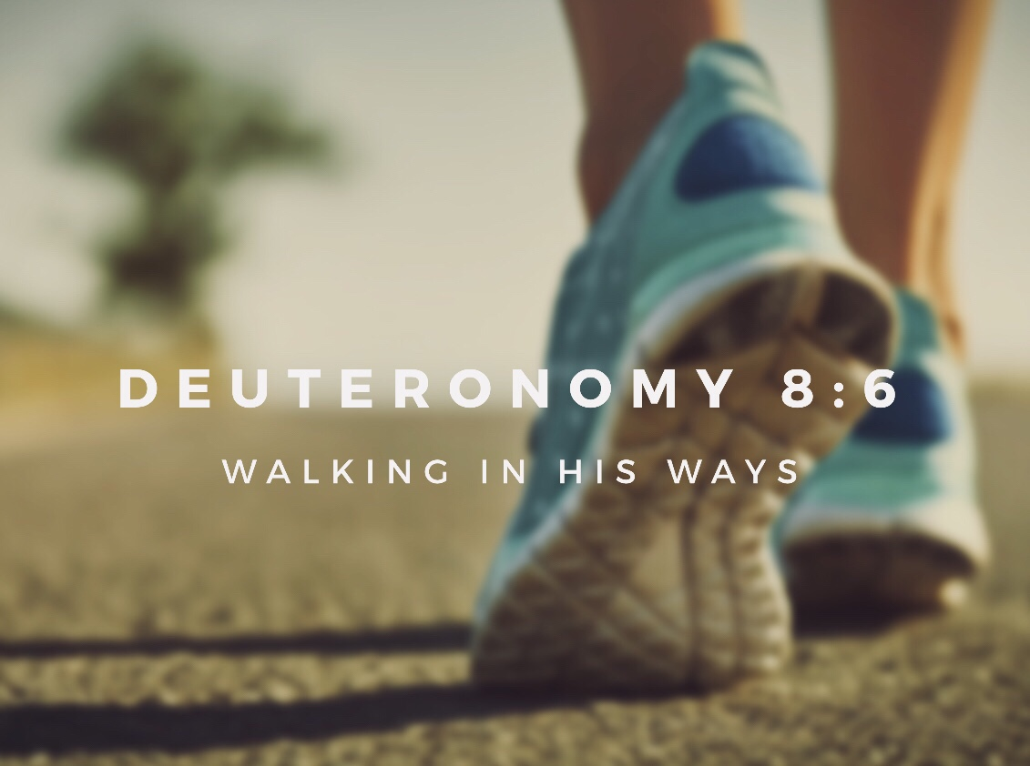 Deuteronomy 8:6… Walking in His Ways